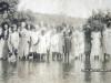 Familia Bucovina