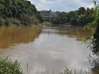 O rio Negro