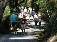 Rio Negro prepara novo percurso para 'Caminhada na Natureza'